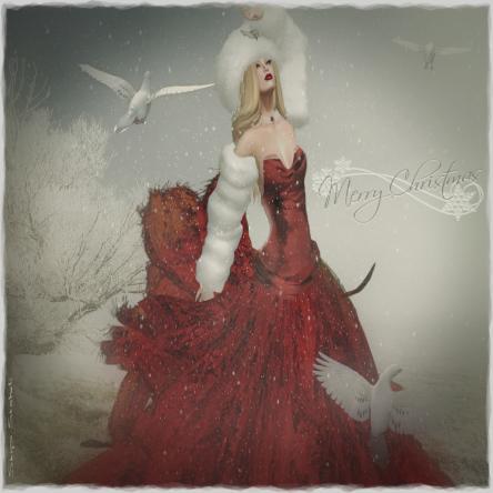 CC Teardrop~Merry Christmas  Card