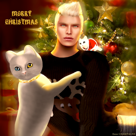 Merry Christmas! From Enzo Champagne, Zeus & Snow
