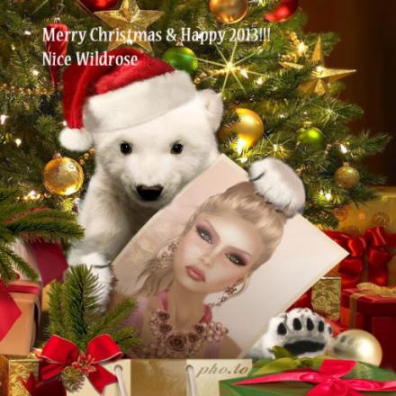 Merry Xmas from Nice Wildrose